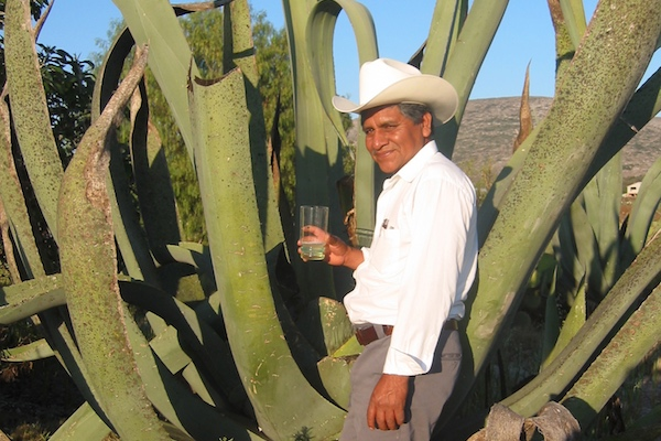 The Agave Growers of Ixmiquilpan - A Bright Future (3 of 3)